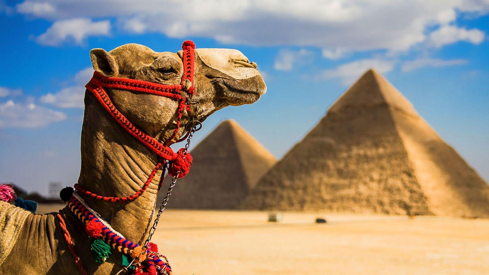 Egypt 1920 × 1080